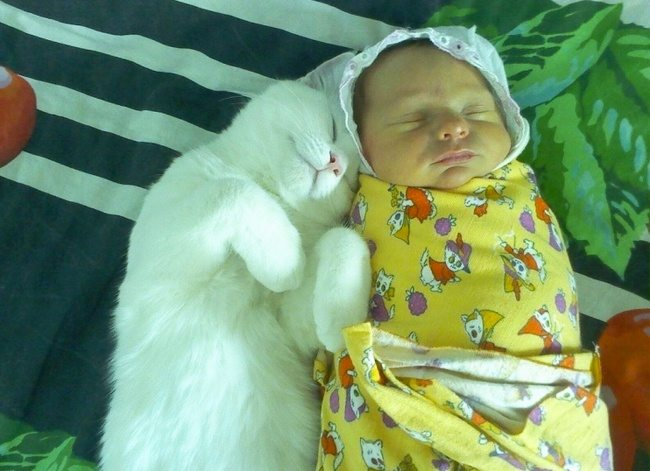 1-photos-of-kids-and-pets-that-melt-your-heart