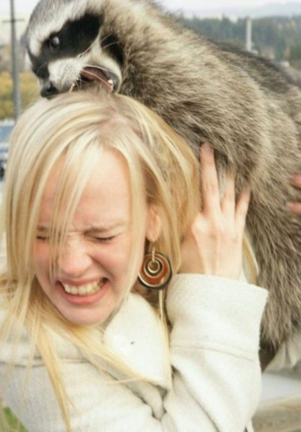 1-these-photos-prove-that-not-all-animals-love-girls
