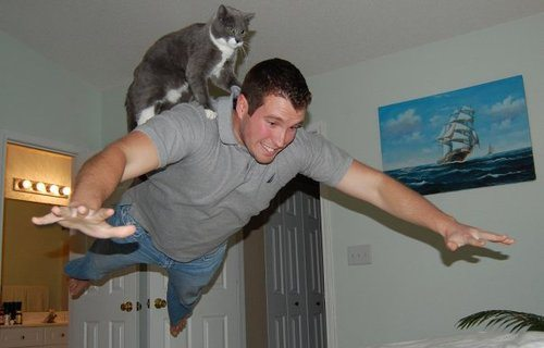 1-funny-animal-photos-taken-better-hilarious