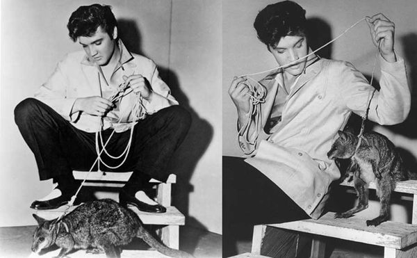 famous-people-with-exotic-pets-1